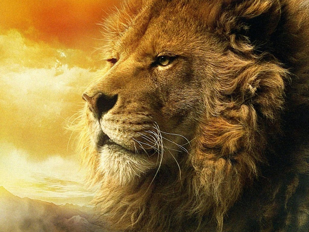 Narnia Aslan Wallpaper | Free | Download for Narnia Aslan Wallpaper  174mzq